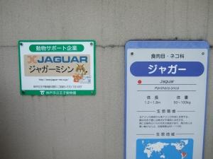 20100503王子動物園6