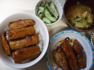 20100512さんまの蒲焼き丼