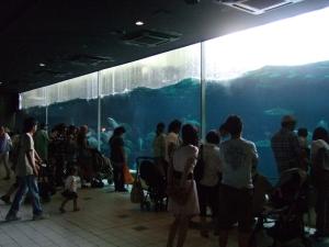 20100815須磨海浜水族園