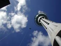 NZ20130_thumb[1]