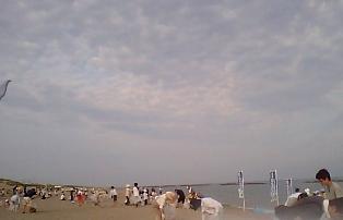 2011_7_18.jpg