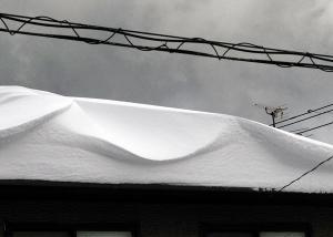 roof1.jpg
