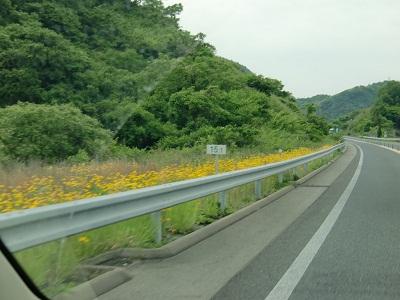 20100531.しまなみ海道サイクリング9