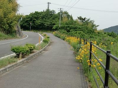 20100531.しまなみ海道サイクリング8