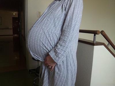 20110207双子妊婦