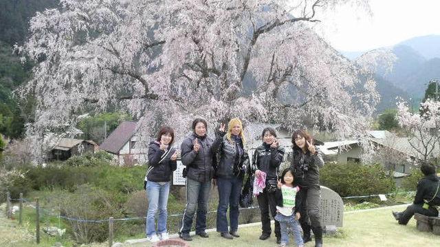 20110411羅漢ツー19