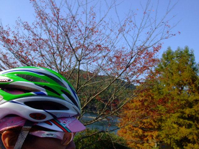 2009_1029自転車工房0057