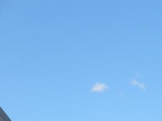 いいお天気です