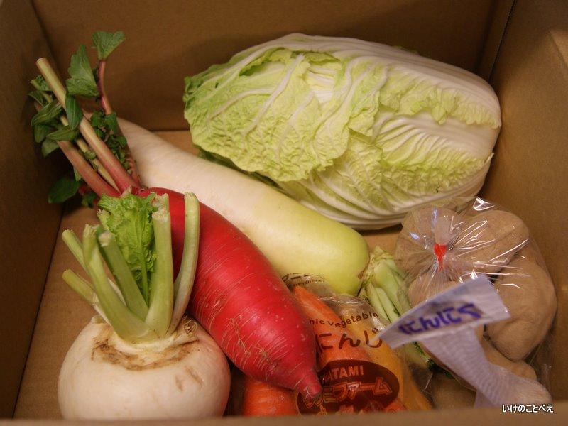 ワタミファームの野菜と金目鯛のちり鍋
