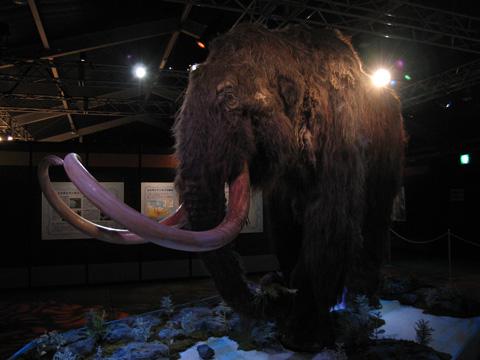 20060121_yukagir_mammoth-03.jpg