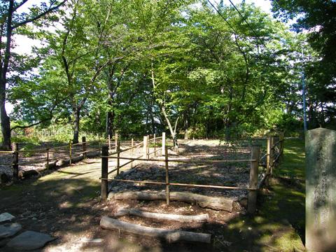 20080914_kaikoen-06.jpg