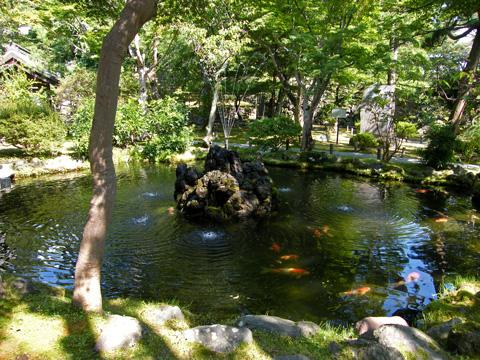 20080914_kaikoen-19.jpg