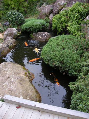 20081005_mt_nesugata-07.jpg