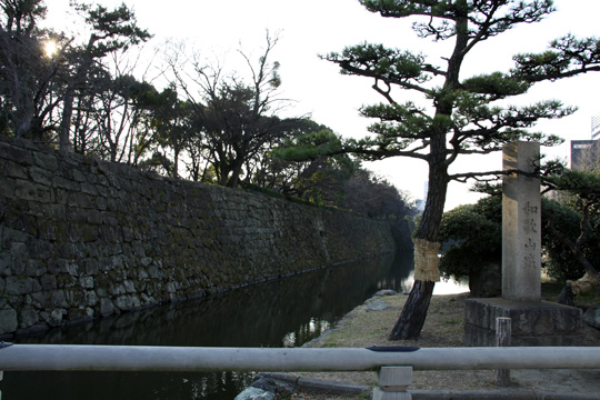 20090117_wakayama_castle-01.jpg