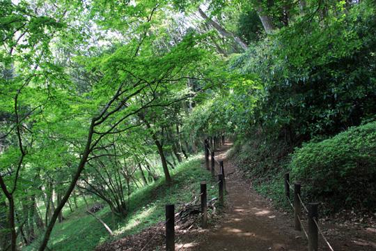 20090504_yamanaka_castle-18.jpg