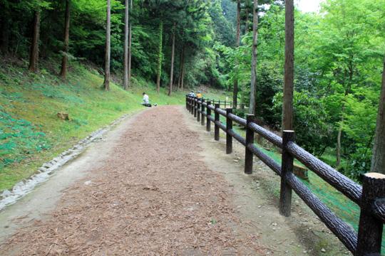 20090505_hachioji_castle-12.jpg