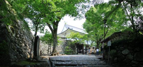20090614_inuyama_castle-13.jpg