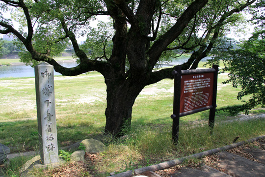 20090614_okazaki_castle-14.jpg
