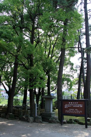 20090614_okazaki_castle-23.jpg
