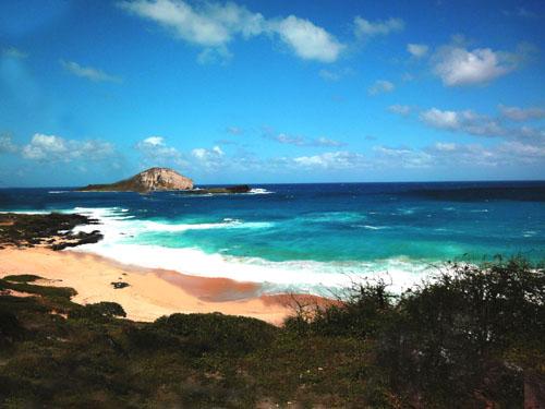 ハワイ オアフ島 ワイキキ のんびり旅