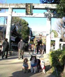 牛島神社にいってみた