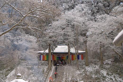 20090104-4.jpg