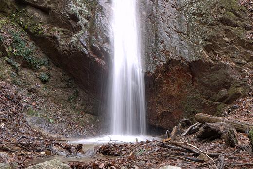 20090124-2.jpg
