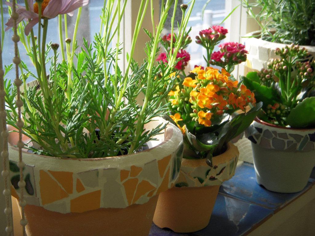 モザイクタイルの鉢