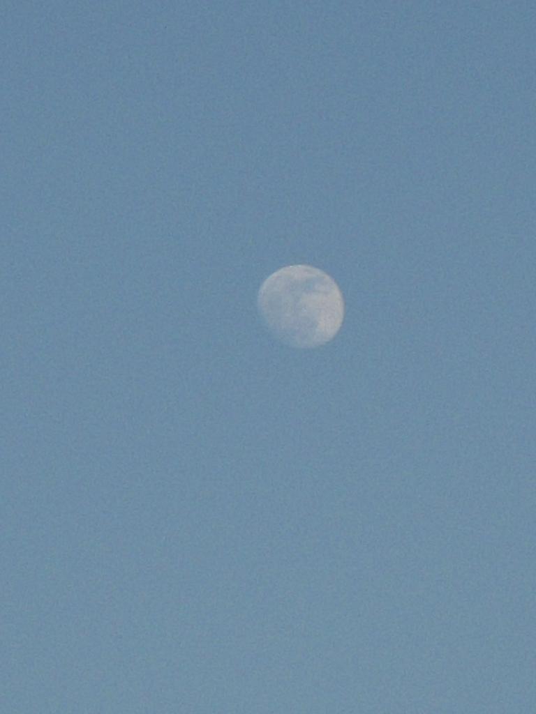 月と太陽から