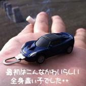 naru (とエリ子)