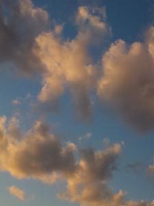手に届きそうな雲