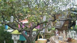 林檎の木のプロヴァンスの雑貨ショップ