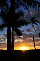 2011_hawaii_2_21.jpg
