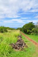 2011_hawaii_3_22.jpg
