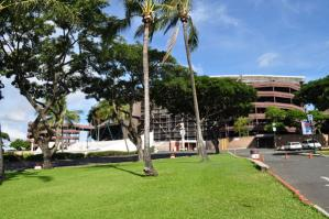 2011_hawaii_4_5.jpg