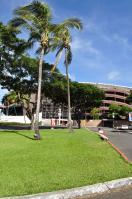 2011_hawaii_4_6.jpg