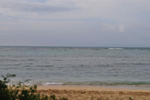 2011_hawaii_6_5.jpg