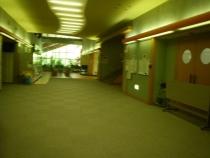 IMGP8343.jpg