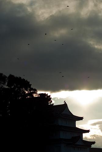 堀川から名城へ-12