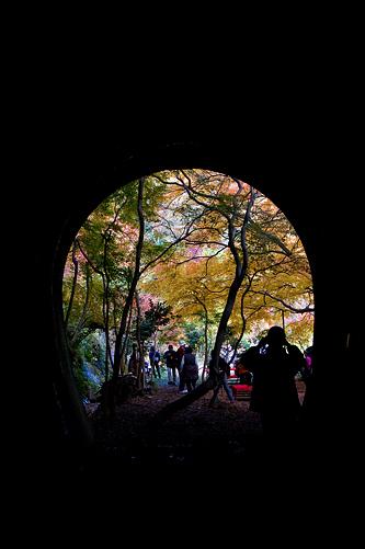 愛岐トンネル2-4