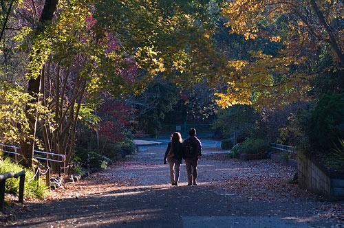 東山植物園-19