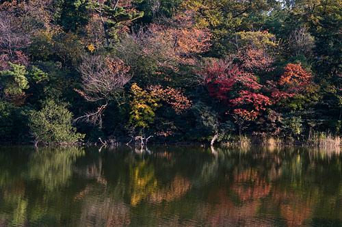 牧野ヶ池-2