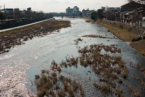 京都歩き4-5