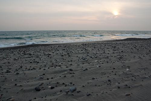 中田島砂丘2-4