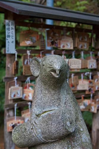 京都歩き7-6