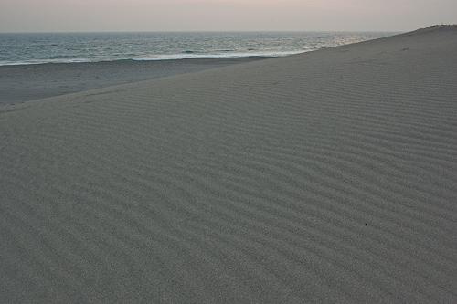 中田島砂丘風紋
