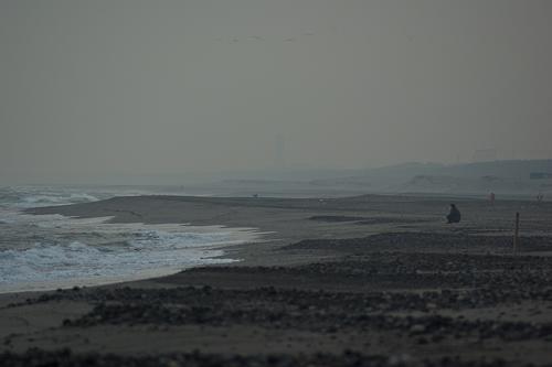 中田島砂丘米津の浜