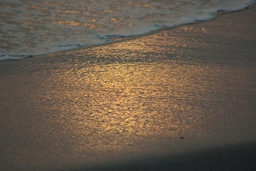 中田島砂丘浜辺のオレンジ