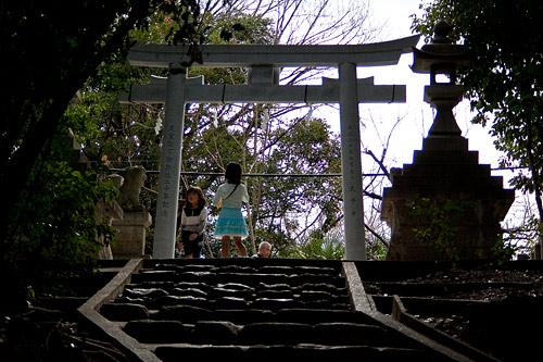 針名神社境内の風景