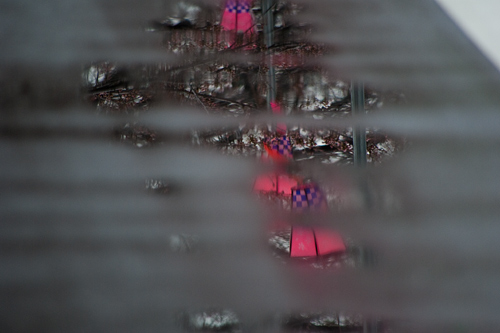 雨桜1-8